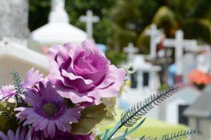 blossom-plant-flower-petal-religion-memory-858887-pxhere.com